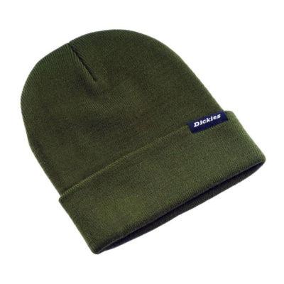 Dickies - Alaska Beanie - Olive Green